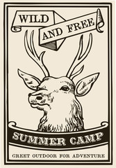 Deer summer camp