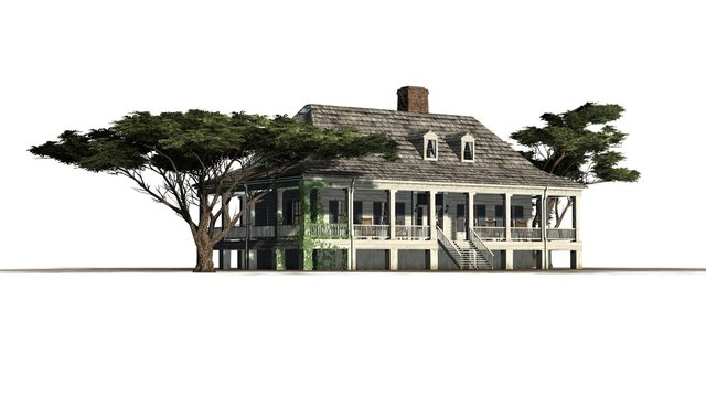 Plantation Houses with umbrella pine trees
