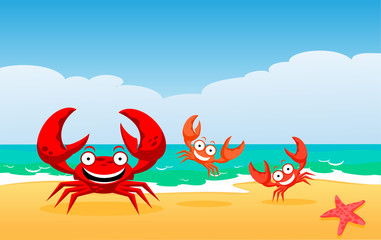 family of crabs at the sea