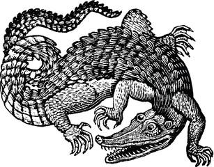 Vintage graphic crocodile