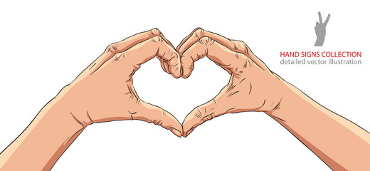 Hands in heart form, detailed vector illustration.