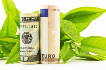 American dollar and European euro in fresh partnerships