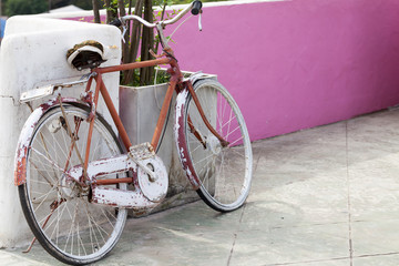 old bicycle on wall