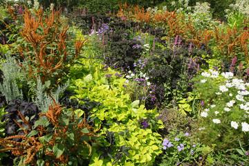 Massif de plantes estivales