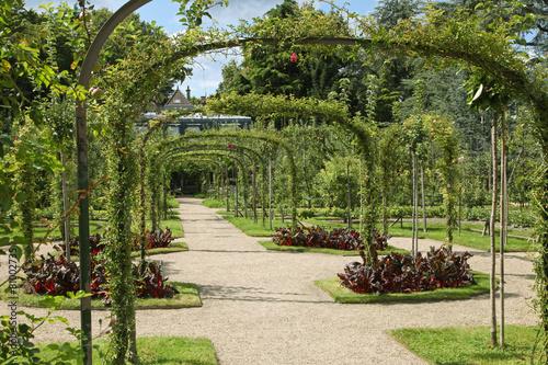 Jardin anglais albert kahn photo libre de droits sur la for Jardin anglais albert kahn