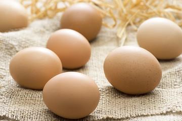 Eggs on Canvas