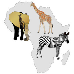 The Africa and its animals