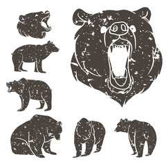 Set of different bears 2