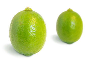 Closeup of two whole ripe lime fruits isolated on white