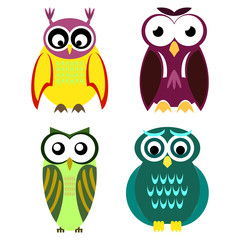 Collection of different owls