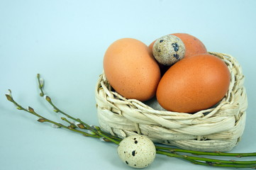 Eggs in a basket on grey background and willow twigs