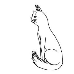 Foto op Canvas One Line Art Sketch hand drawn vector outline illustration of cat