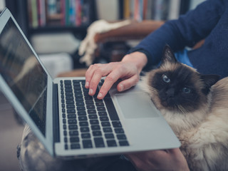 Woman with cat and laptop