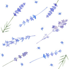 Watercolor seamless pattern with lavender. Vector background.