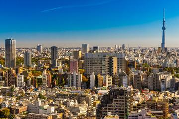 Wall Mural - Tokyo skyline,  Japan.