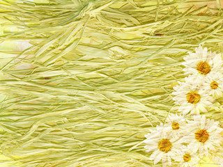 Abstract vintage floral background with daisies and straw made w