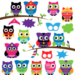 Vector Set of Superhero Owls with Branches and Speech Bubbles