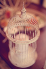 Birdcage wedding decoration