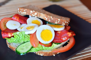Fresh and tasty sandwich with salami and vegetables on a plate