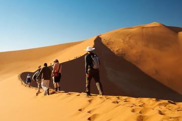 Wüstenwanderung Wall mural