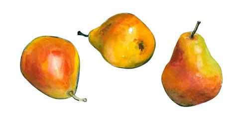Watercolor pears.