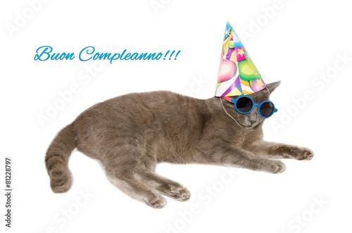 Cartolina D Auguri Di Buon Compleanno Con Gatto Immagini E