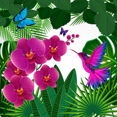 Floral design background. Orchid flowers with bird.