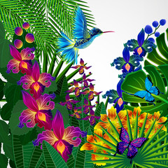 Floral design background. Tropical orchid flowers.