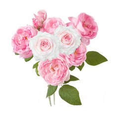 Bunch of pink and white roses isolated on white