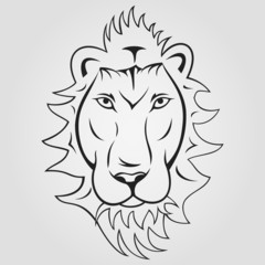 Lion head ioutlined on a white background