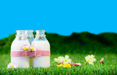 three small bottles of milk in a meadow