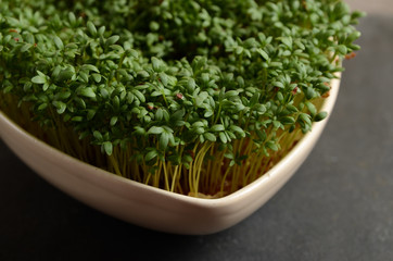 Fresh cress in a bowl