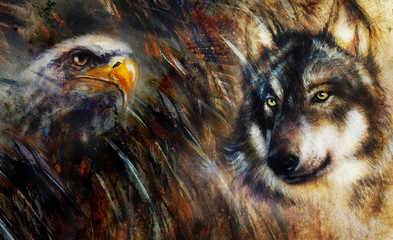 Wolf and eagle color painting, feathers background, multicolor c
