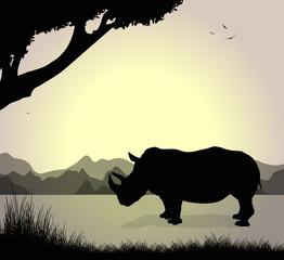silhouette di rinoceronte