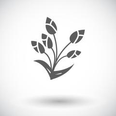 Tulip single icon.