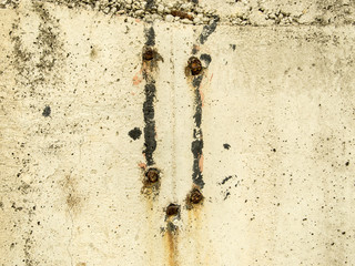 Wall Texture with Rusty Nails