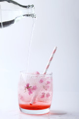 Fresh pink flower frozen in ice cubes for summer drinks