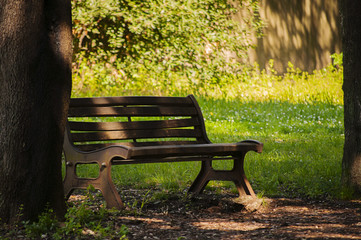 Panchina in un parco