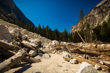 Wall Mural - Trail zum Tenaya Creek, Yosemite