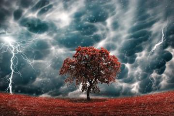 Foto auf Acrylglas Onweer Stormy tree landscape