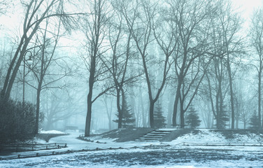 City Park in the fog
