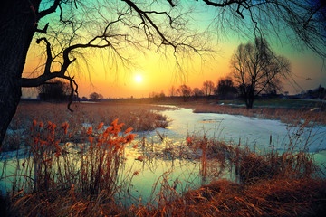 Photo sur Toile Marron chocolat Winter rural landscape at sunset