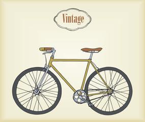 Hand drawn vintage/retro bicycle. Vector