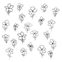 Hand drawn pen and ink style illustration of flowers