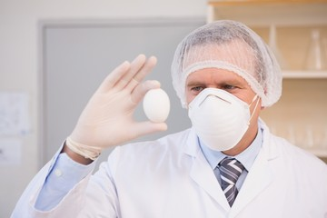 Food scientist holding an egg