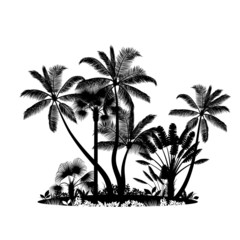 Palm trees island isolated on white