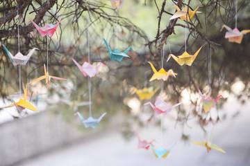 Colorful origami cranes