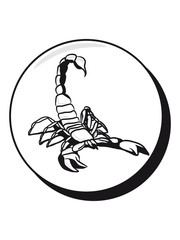 Scorpio horoscope botton