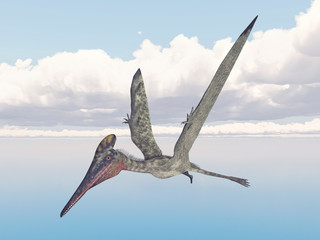 Pterosaur Pterodactylus