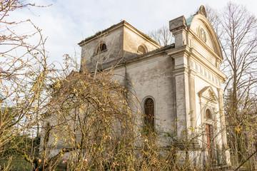 Bushes in front of facade of Italian XVII Century church